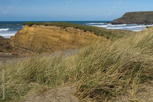 Fototapeta Sand dunes at Widemouth Bay in Cornwall
