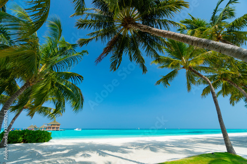 Sandy beach of tropical island in the Maldives