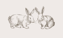 Two Hand-drawn Cute Rabbits Pe...