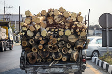 Decay Pickup Car Transporting ...
