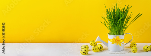 Photo Easter still life, background, panorama, banner with space for text - white wate