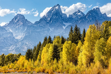 Fototapeta Góry View of the Grand Teton Mountains from Schwabacher Landing on the Snake River. Grand Teton National Park, Wyoming, United States.
