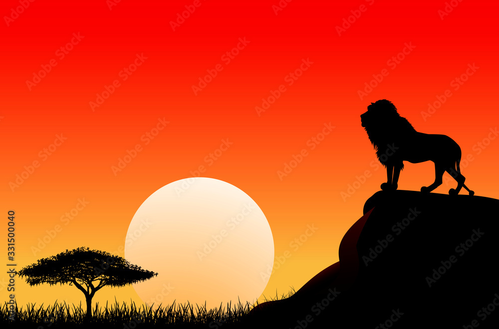 Fototapeta African lion sun sunset nature. An African lion stands on a stone against the background of the sun. Sky, sun, sunset. The nature of the African savanna