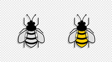 Two Bee With Shadow, Isolated On Transparent Background. Bee In Different Styles. Bee. Vector Illustration