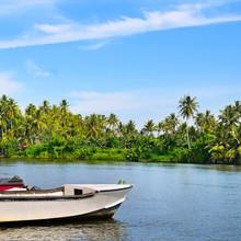 Picturesque Tropical Landscape...