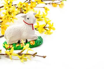 Wielkanocne tło - baranek na tle żółtych kwiatów forsycji