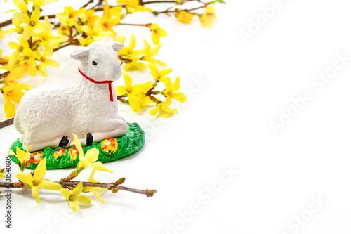 Obraz Wielkanocne tło - baranek na tle żółtych kwiatów forsycji - fototapety do salonu