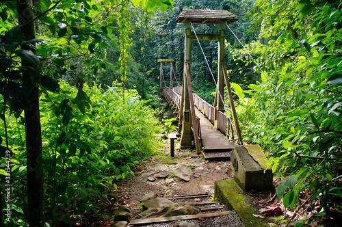 Hanging bridge leading to the Forest House (Maison de la Forêt) in Basse-Terre, Canvas Print