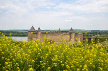 Yellow Flowers And Medieval Castle On Background. Khotyn Fortress Over Dniester River In Khotyn City, Ukraine