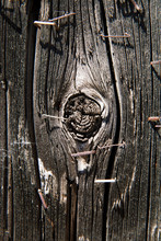 Old Staples In Knotty Wooden T...