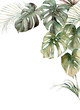 Leinwanddruck Bild - Watercolor tropical frame with monstera and coconut leaves. Hand painted exotic leaves isolated on white background. Floral illustration for design, print, fabric or background.