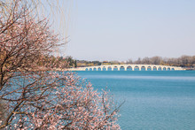 Seventeen-hole Bridge In The Summer Palace In Beijing, China. Spring In Beijing Summer Palace