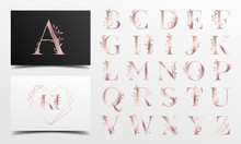 Beautiful Rose Gold Alphabet Collection