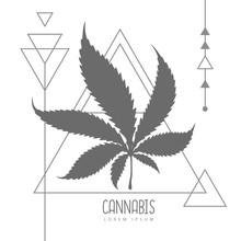 Cannabis Leaf Silhouette On Tr...