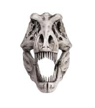 Dinosaur Skull Isolated On White Background