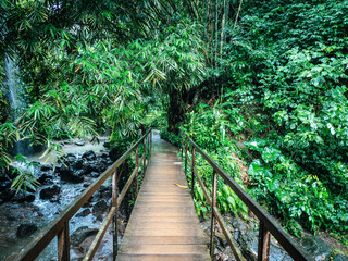 Fototapeta Optyczne powiększenie Wooden bridge leading over a river in a tropical rainforest