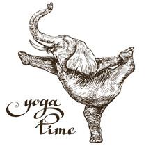 Elephant Meditates Stands On O...