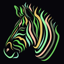 Colorful Zebra On A Black Back...