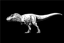 Graphical Tyrannosaurus Isolat...
