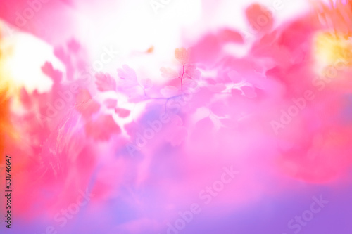 abstract background with bokeh - 331746647