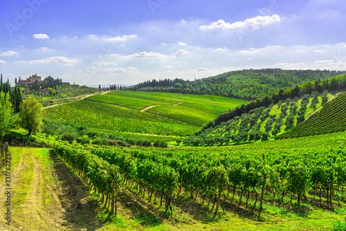 Fotografiet Radda in Chianti vineyard and panorama at sunset. Tuscany, Italy
