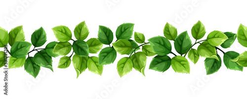 Obraz Vector horizontal seamless border with green leaves. - fototapety do salonu