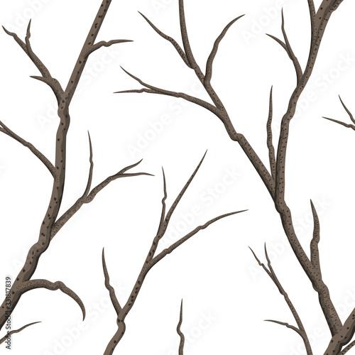 Valokuvatapetti Seamless bare tree Branches on a white background.