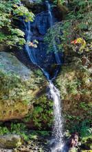 Flowing Steep Creek Falls In T...