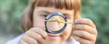 Child With A Magnifying Glass ...