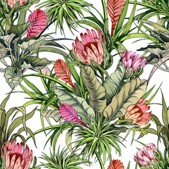 Fototapeta Egzotyczne Floral pattern with exotic protea flowers and green tropical foliage.
