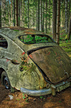 Trunk Of Old Abandoned Volvo I...