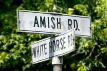 Amish Horse And Carriage Drivi...