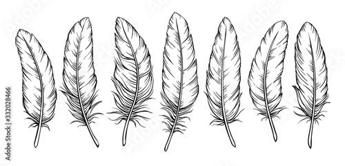 Obraz na plátně Sketch feathers set