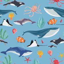 Underwater World Fish And Whales, Starfish, Algae