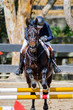 Jockey and horse in equestrian show jumping competition