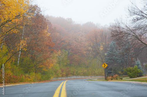 Yellow double line down the middle of the curvy and winding road lined with multicolored autumn trees