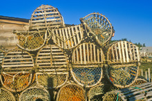 Stacks Of Lobster Traps, Musco...