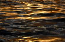 Liquid Gold, Ripples At Sunset, Sydney Australia