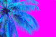 Leinwanddruck Bild - Bright blue holographic neon colored palm tree in abstract style on pink background. Night club beach party flyer template. Retro style creative summer design concept. Open composition. Copy space.