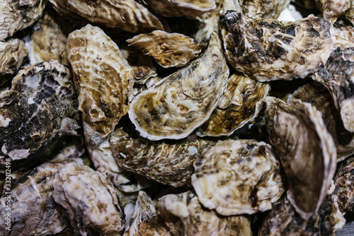 closed oysters, fresh oyster shell, mollusks in seafood market, sea restaurant, Fototapeta