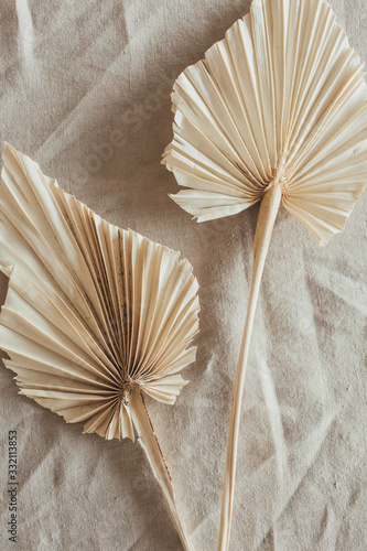 Fototapeta Tan fan craft leaves on beige washed linen cloth