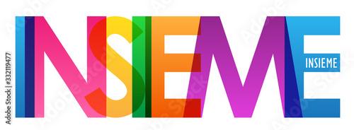 Fényképezés Banner tipografia vettoriale INSIEME
