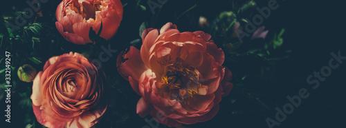 Fototapeta Vintage bouquet of beautiful red flowers. Floral background. obraz