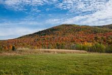Autumn Hillside In The Adirond...