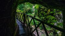 La Palma- Weg Ins Freie
