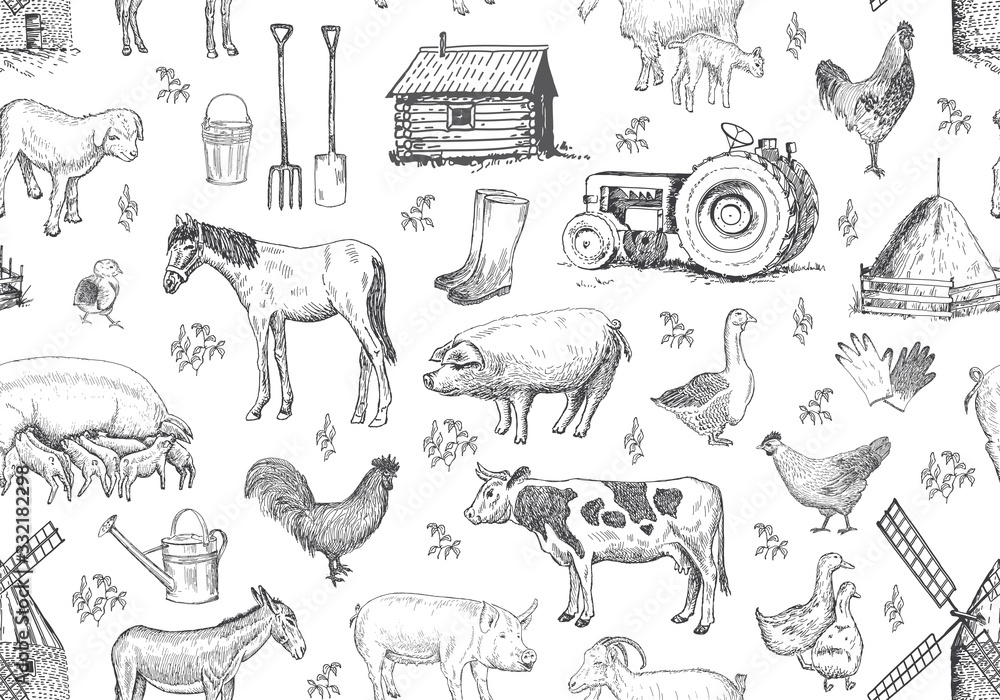 Fototapeta Vector seamless pattern with farm elements, animals.