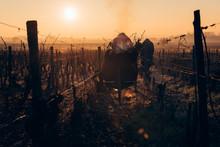 Vigneron Travaillant Dans Les Vignes En Hiver Avec Une Brouette Fumante