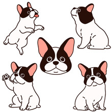 Set Of Outlined French Bulldog Puppy Illustrations