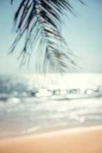 Blurred Green Palm Leaf On Tropical Beach With Bokeh Sun Light Wave Abstract Background. Summer Vacation And Travel Concept, Copy Space