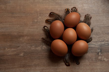 Six Eggs With Quail Feathers L...